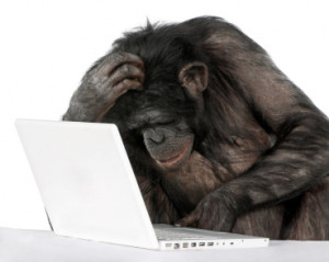 Many SEO Firms out there are No More Effective than Monkeys at a Keyboard!